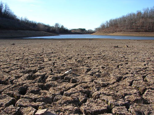 Low water levels in reservoirs mean UK gardeners are on drought alert.